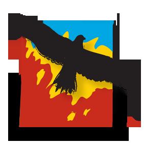 Phoenix Consulting